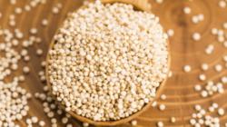 """Carina Peretti: """"La quinoa es un pseudocereal con multiples beneficios""""."""