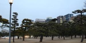 Tokio 2020 ya tiene circuito aprobado para la marcha atlética