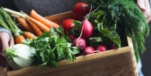 #Nutricion Tips para consumir vegetales en invierno