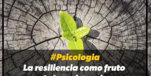#Psicologia: La resiliencia como fruto de la resistencia