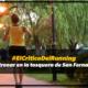 #ElCriticoDelRunning: 'Entrenar en la tosquera de San Fernando'